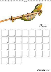Sportliche Tiere (Wandkalender 2018 DIN A3 hoch) - Produktdetailbild 1
