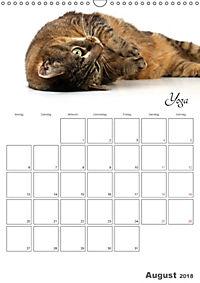 Sportliche Tiere (Wandkalender 2018 DIN A3 hoch) - Produktdetailbild 8