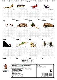 Sportliche Tiere (Wandkalender 2018 DIN A3 hoch) - Produktdetailbild 13