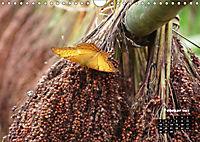 Stille Momente in Laos (Wandkalender 2018 DIN A4 quer) - Produktdetailbild 2