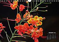 Stille Momente in Laos (Wandkalender 2018 DIN A4 quer) - Produktdetailbild 1