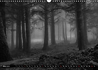 Stille Momente in Schwarz-WeissCH-Version (Wandkalender 2018 DIN A3 quer) - Produktdetailbild 3