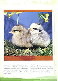 Stolze Hähne und fleißige Hennen - Produktdetailbild 8