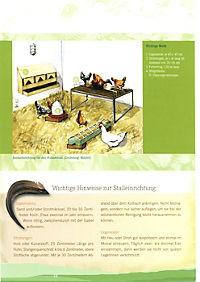 Stolze Hähne und fleißige Hennen - Produktdetailbild 5