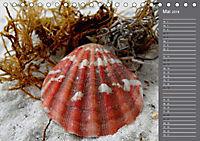 Strandgut / Geburtstagskalender (Tischkalender 2018 DIN A5 quer) Dieser erfolgreiche Kalender wurde dieses Jahr mit glei - Produktdetailbild 5