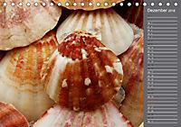 Strandgut / Geburtstagskalender (Tischkalender 2018 DIN A5 quer) Dieser erfolgreiche Kalender wurde dieses Jahr mit glei - Produktdetailbild 12