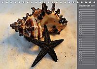 Strandgut / Geburtstagskalender (Tischkalender 2018 DIN A5 quer) Dieser erfolgreiche Kalender wurde dieses Jahr mit glei - Produktdetailbild 9