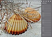 Strandgut / Geburtstagskalender (Tischkalender 2018 DIN A5 quer) Dieser erfolgreiche Kalender wurde dieses Jahr mit glei - Produktdetailbild 7