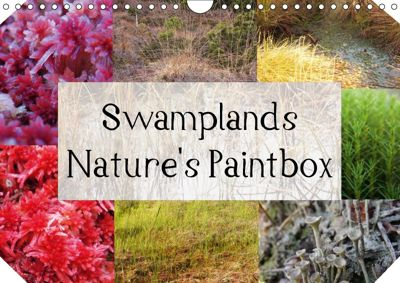 Swamplands Nature's Paintbox (Wall Calendar 2018 DIN A4 Landscape), Hannelore Spaeth