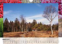 Swamplands Nature's Paintbox (Wall Calendar 2018 DIN A4 Landscape) - Produktdetailbild 3
