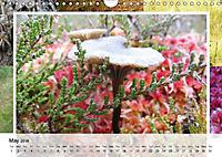 Swamplands Nature's Paintbox (Wall Calendar 2018 DIN A4 Landscape) - Produktdetailbild 5