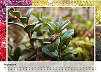 Swamplands Nature's Paintbox (Wall Calendar 2018 DIN A4 Landscape) - Produktdetailbild 8