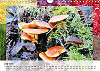 Swamplands Nature's Paintbox (Wall Calendar 2018 DIN A4 Landscape) - Produktdetailbild 7