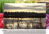 Swamplands Nature's Paintbox (Wall Calendar 2018 DIN A4 Landscape) - Produktdetailbild 6