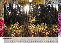 Swamplands Nature's Paintbox (Wall Calendar 2018 DIN A4 Landscape) - Produktdetailbild 9