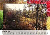 Swamplands Nature's Paintbox (Wall Calendar 2018 DIN A4 Landscape) - Produktdetailbild 11