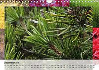 Swamplands Nature's Paintbox (Wall Calendar 2018 DIN A4 Landscape) - Produktdetailbild 12