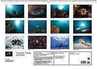 Tauchen, Fische und Meer (Wandkalender 2018 DIN A2 quer) - Produktdetailbild 13