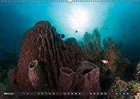 Tauchen, Fische und Meer (Wandkalender 2018 DIN A2 quer) - Produktdetailbild 3