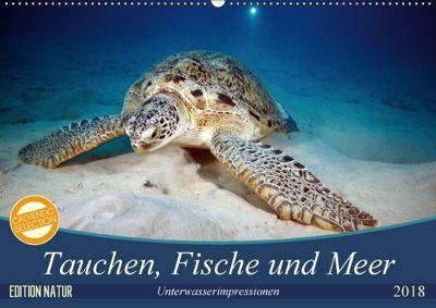 Tauchen, Fische und Meer (Wandkalender 2018 DIN A2 quer), Sven Gruse