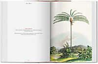 The Book of Palms - Produktdetailbild 3