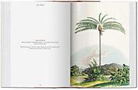 The Book of Palms - Produktdetailbild 3