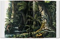 The Book of Palms - Produktdetailbild 5
