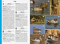 Tiere und Pflanzen - Produktdetailbild 3