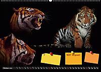 Tierwelt aus Mausopardia (Wandkalender 2019 DIN A2 quer) - Produktdetailbild 10