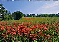 Toskana - Magie der Farben (Wandkalender 2019 DIN A2 quer) - Produktdetailbild 3