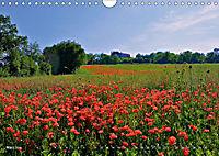 Toskana - Magie der Farben (Wandkalender 2019 DIN A4 quer) - Produktdetailbild 3