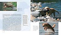 Traumhund Retriever - Produktdetailbild 3