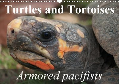 Turtles and Tortoises - Armored pacifists (Wall Calendar 2018 DIN A3 Landscape), Elisabeth Stanzer