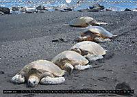 Turtles and Tortoises - Armored pacifists (Wall Calendar 2018 DIN A3 Landscape) - Produktdetailbild 10