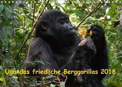 Ugandas friedliche Berggorillas (Wandkalender 2018 DIN A4 quer) Dieser erfolgreiche Kalender wurde dieses Jahr mit gleic, Johanna Krause