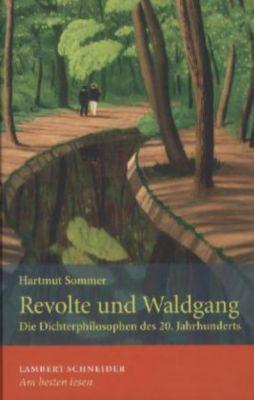 Unterwegs mit Sartre, Hartmut Sommer