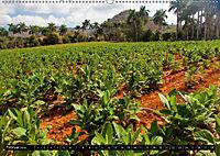 Valle de Viñales - Kubas Tal der Träume (Wandkalender 2018 DIN A2 quer) Dieser erfolgreiche Kalender wurde dieses Jahr m - Produktdetailbild 2