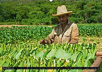 Valle de Viñales - Kubas Tal der Träume (Wandkalender 2018 DIN A2 quer) Dieser erfolgreiche Kalender wurde dieses Jahr m - Produktdetailbild 11