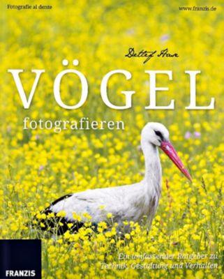 Vögel fotografieren, Detlef Hase