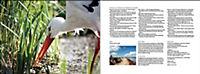 Vögel in Norddeutschland - Produktdetailbild 14