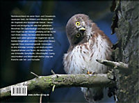 Vögel in Norddeutschland - Produktdetailbild 15