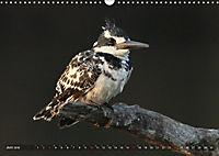 Vogelparadiese Afrikas - Sambesi, Okavango Delta, Chobe (Wandkalender 2018 DIN A3 quer) - Produktdetailbild 6