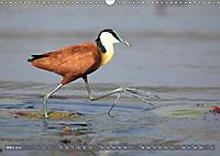 Vogelparadiese Afrikas - Sambesi, Okavango Delta, Chobe (Wandkalender 2018 DIN A3 quer) - Produktdetailbild 3
