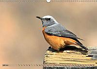Vogelparadiese Afrikas - Sambesi, Okavango Delta, Chobe (Wandkalender 2018 DIN A3 quer) - Produktdetailbild 7