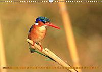 Vogelparadiese Afrikas - Sambesi, Okavango Delta, Chobe (Wandkalender 2018 DIN A3 quer) - Produktdetailbild 10