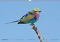 Vogelparadiese Afrikas - Sambesi, Okavango Delta, Chobe (Wandkalender 2018 DIN A3 quer) - Produktdetailbild 11