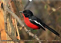 Vogelparadiese Afrikas - Sambesi, Okavango Delta, Chobe (Wandkalender 2018 DIN A3 quer) - Produktdetailbild 12