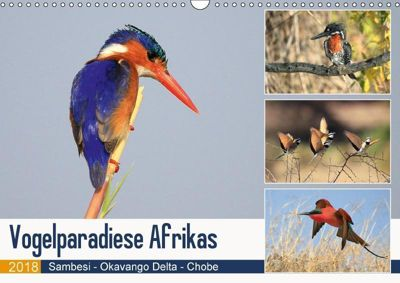 Vogelparadiese Afrikas - Sambesi, Okavango Delta, Chobe (Wandkalender 2018 DIN A3 quer), Michael Herzog