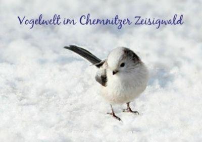 Vogelwelt im Chemnitzer Zeisigwald (Tischaufsteller DIN A5 quer), Heike Hultsch