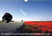 Voll Mohn (Wandkalender 2018 DIN A4 quer) - Produktdetailbild 4